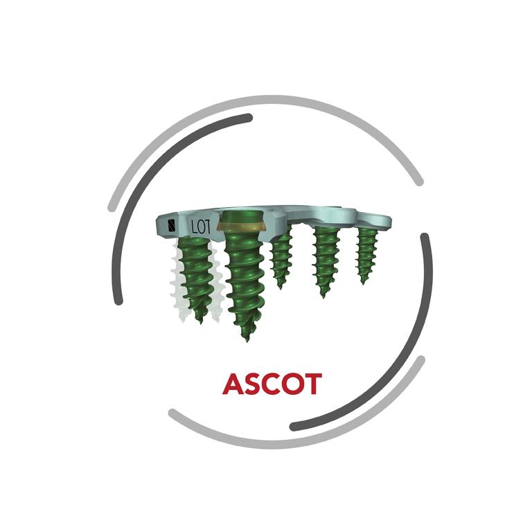 ASCOT – system przedniej stabilizacji kręgosłupa szyjnego